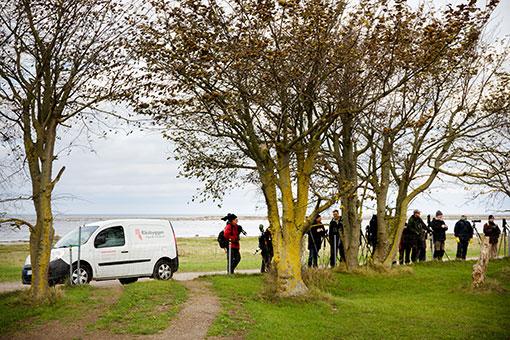 Skådarveckorna lockar många fågelskådare till Ottenby.