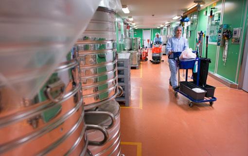 Renrumsprincipen innebär högre renhets- och hygienkrav för Miguel Valdés och Heidi Fredriksson.